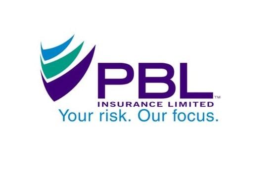 pbllogo562 Partners